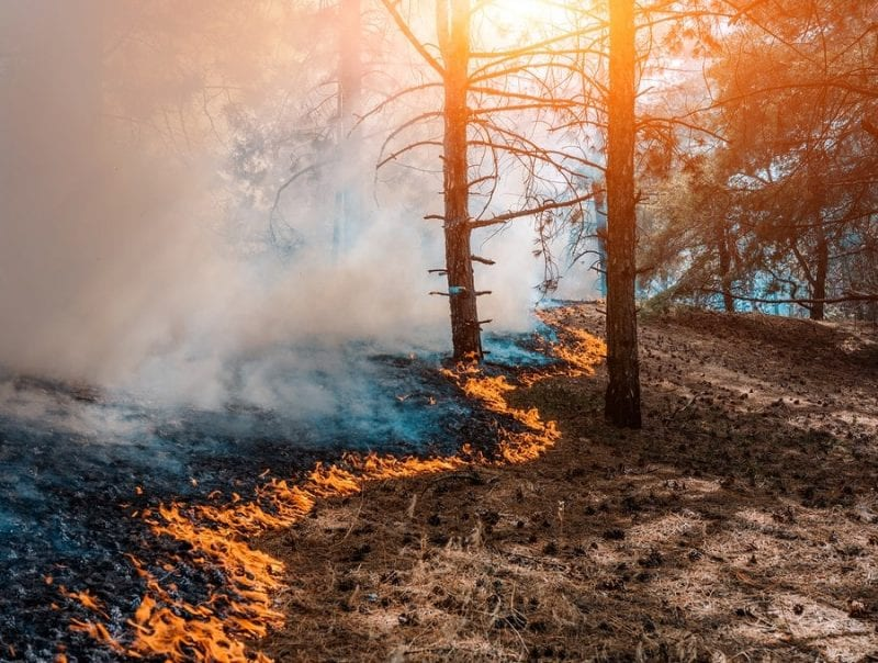 US Air Force: Kingsley Field firefighters save local homes from catastrophic fire