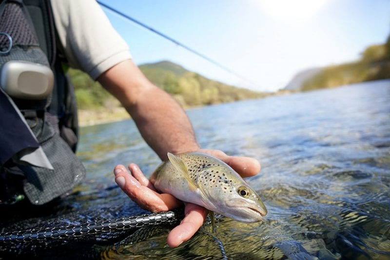 Missouri: Catch-and-Keep Trout Fishing Begins March 1st