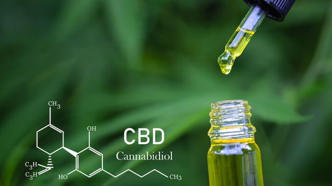 Choosing a CBD Product that Is Right for You