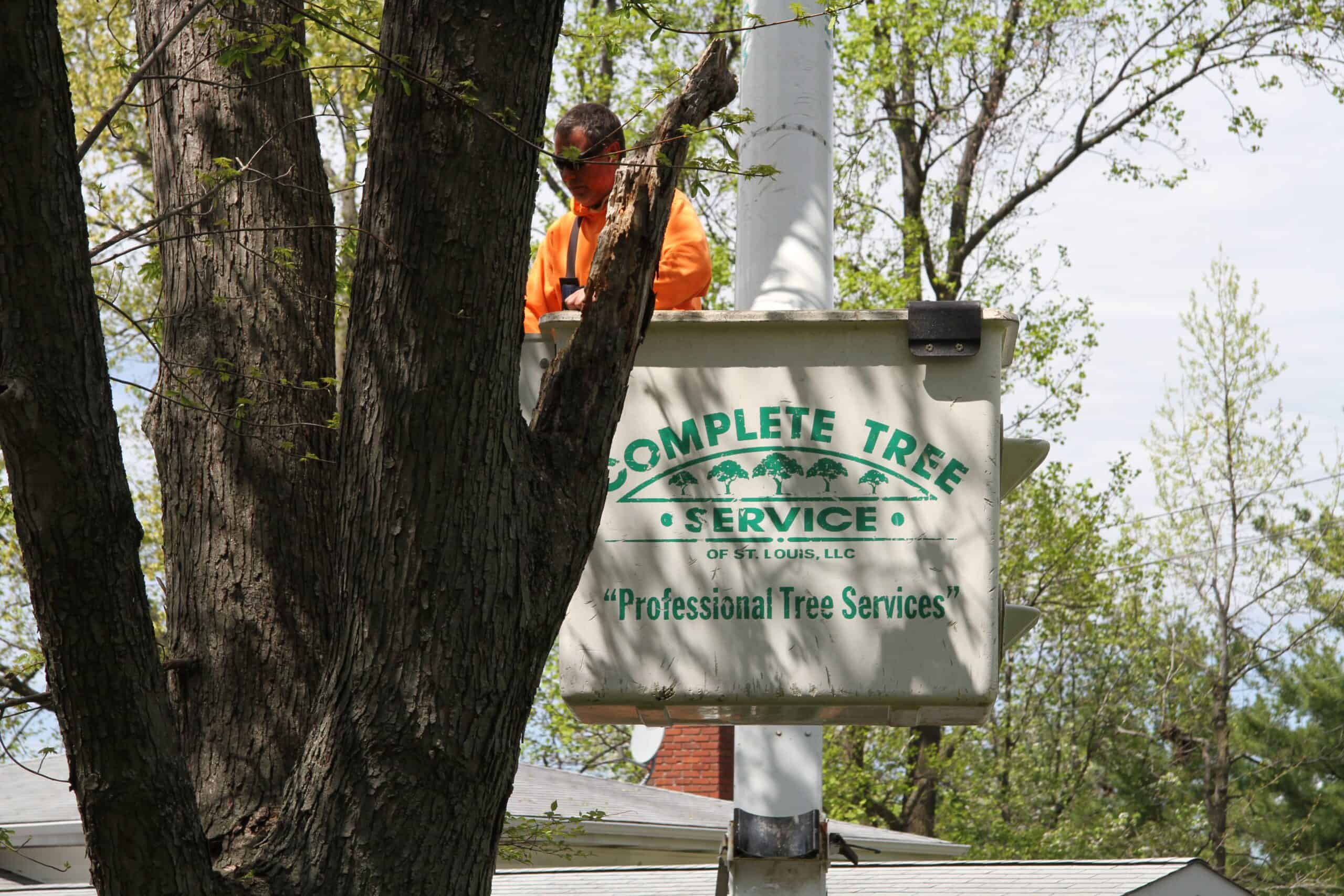 Complete Tree Service, St. Louis, MO