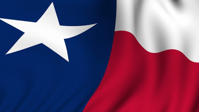 Texas Governor Appoints Eight to Aviation Advisory Committee